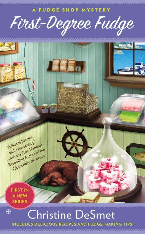Book Cover. First-Degree Fudge - A Fudge Shop Mystery by Christine DeSmet. Pink fudge in a candy store with a dog sleeping on the floor.