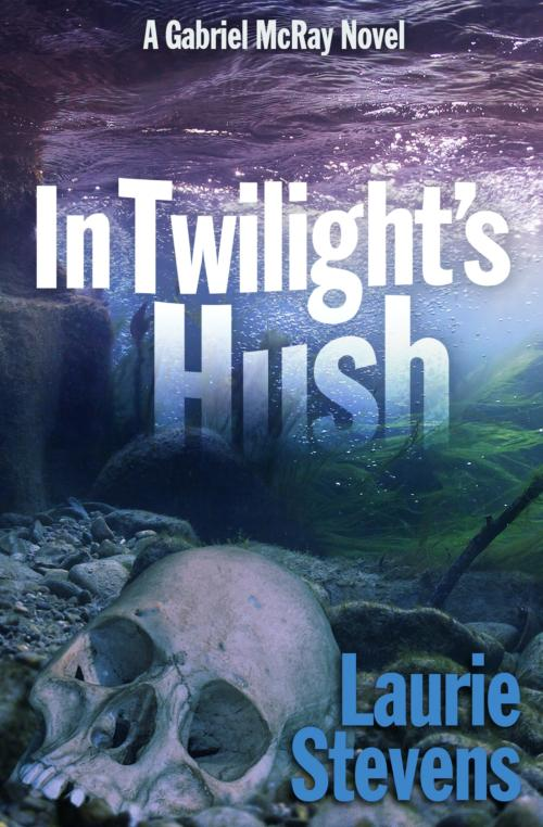 Book cover of In Twilight's Hush by Laurie Stevens