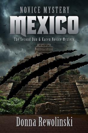 Book cover of Novice Mystery Mexico by Donna Rewolinski