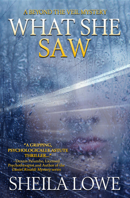 Book cover of What She Saw by Sheila Lowe